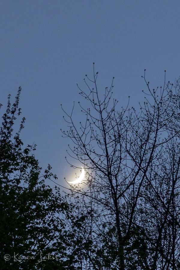 Vermont moon