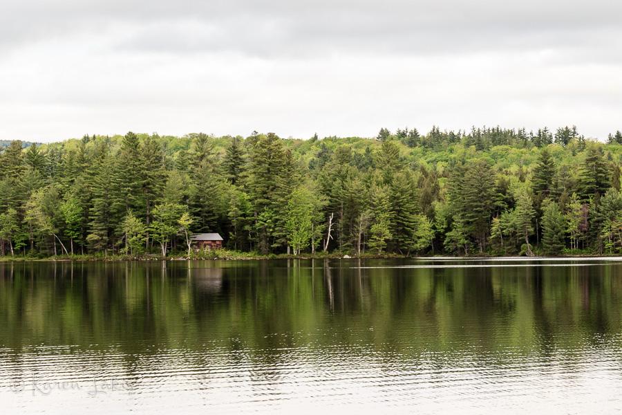 Spring Ramble at Lowell Lake