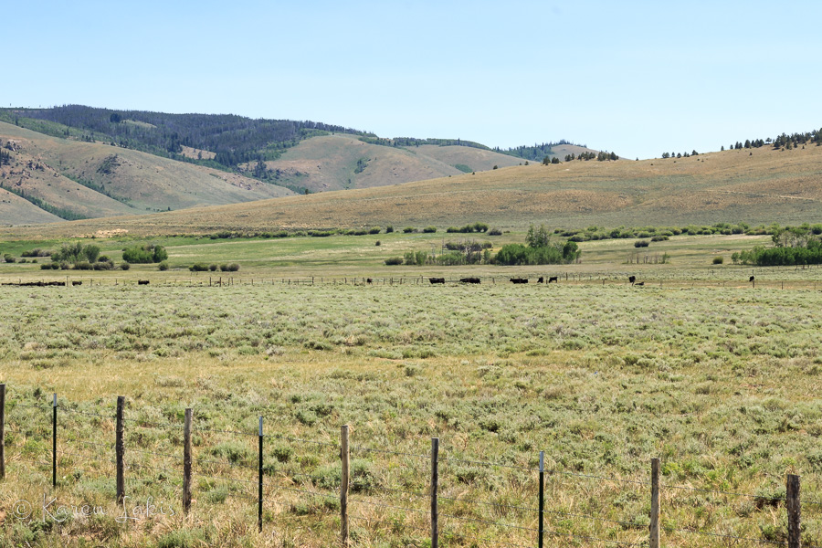Wyoming cattle ranch