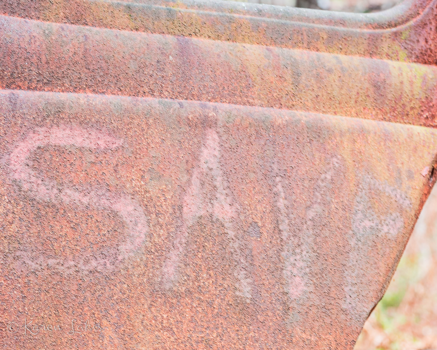 """rusted door with spray painted """"save"""""""