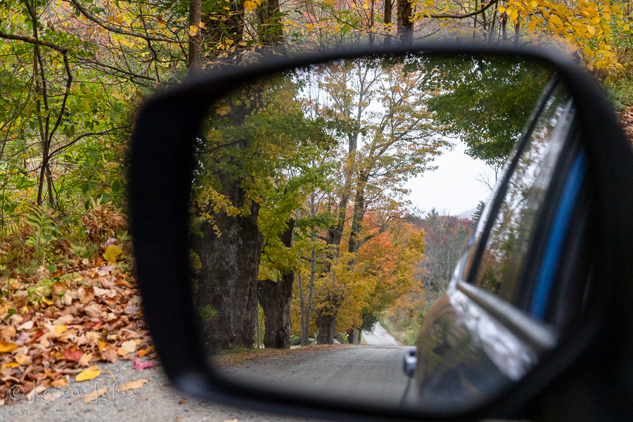 autumn leaves through sideview mirror
