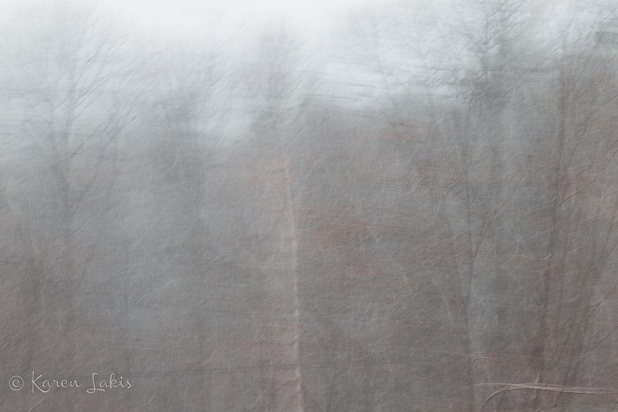 blurry winter storm